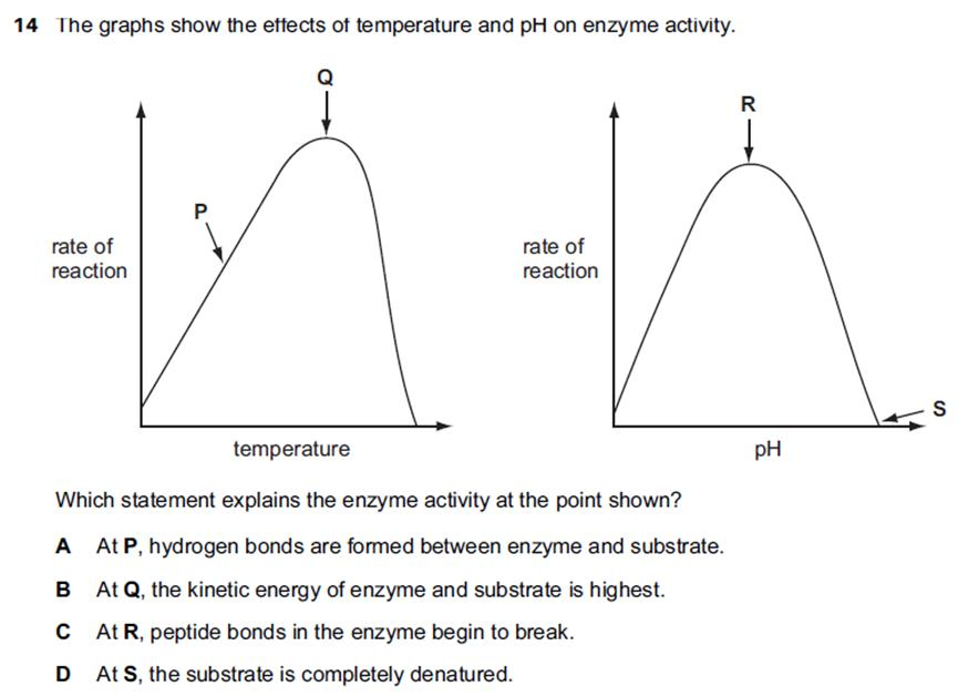 enzyme controlled reactions The active site then returns to its original shape enzyme controlled reactions  reactions proceed because the products have less energy than the substrates.
